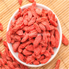 Organic Goji Berries Fruit Dried Wolfberry